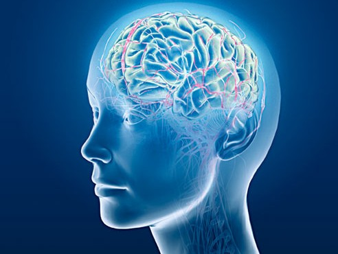 Multiple Benefits Of Cranial Electrotherapy Stimulation