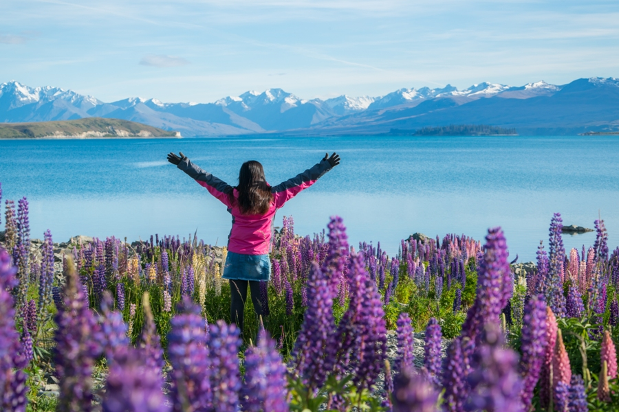 Top 5 NZ Destinations For The First Time Visitor