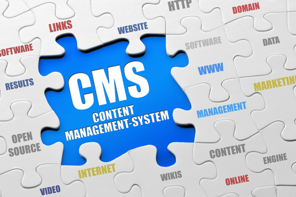 Why Choose WordPress For Your CMS?
