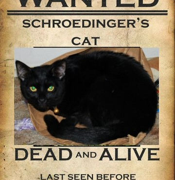 The Famous Schrodinger's Cat Paradox
