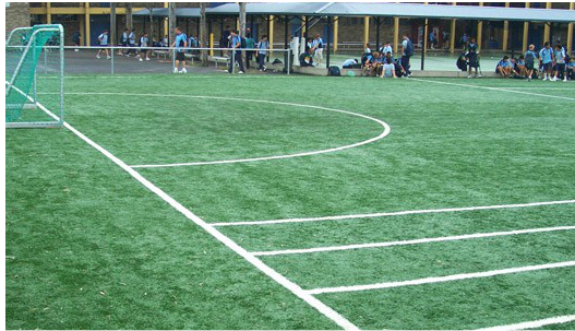 synthetic grass playing surfaces