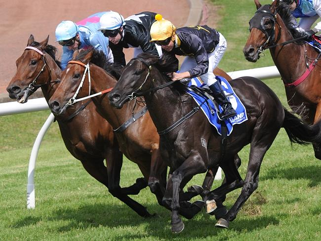 An Early Lesson On Cox Plate Races