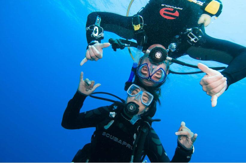 Things To Look For In PADI Divemaster Internships