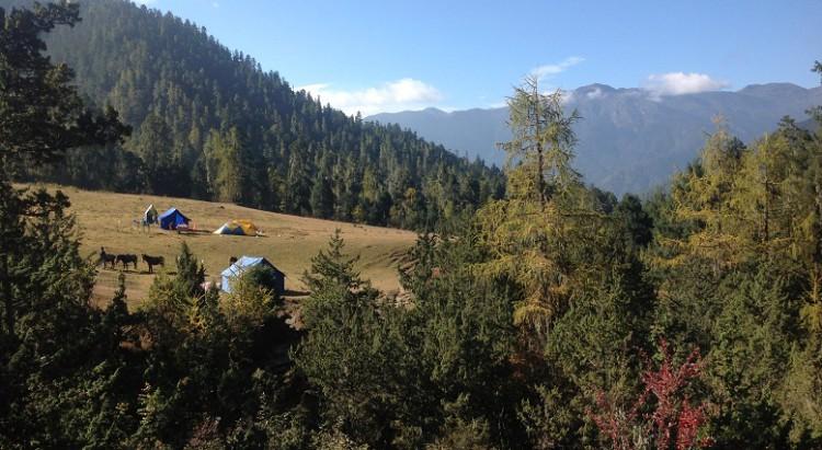 A Quick Guide About Trekking In Bhutan