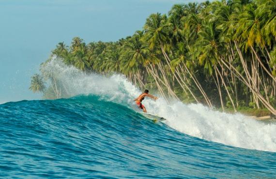 Chilli surfboards Australia