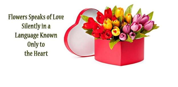 Let's Express Your Commitments With Adorable Valentine's Flowers