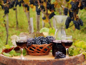 Book A Limo Wine Tour Now And Be Ready To Escape In The World Of Romance!