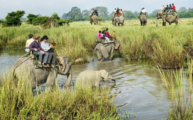 Assam: Explore The Unexplored Land