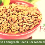 Aromatic Fenugreek Seeds Treat Diabetes, Say Exporters