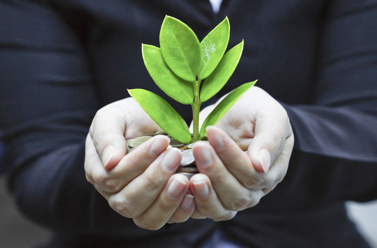 All You Want To Know About Socially Responsible Investment