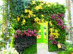 verticke-garden