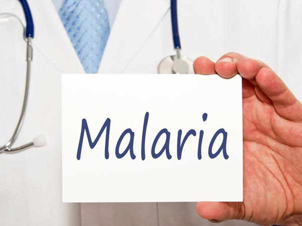 Malaria – Causes, Symptoms And Prevention