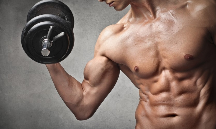 Muscle Building Strategy