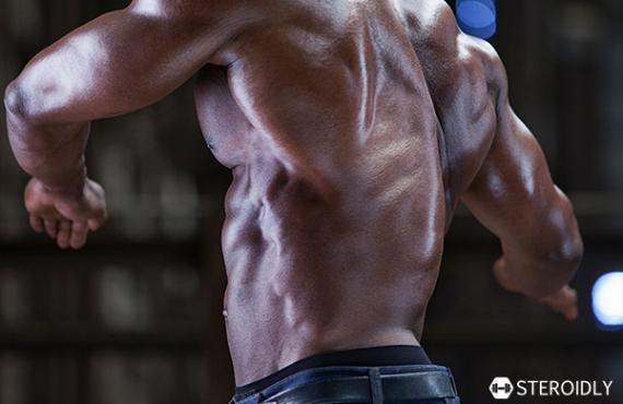 Body Growth