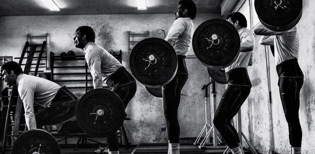 muscle mass optimum nutrition