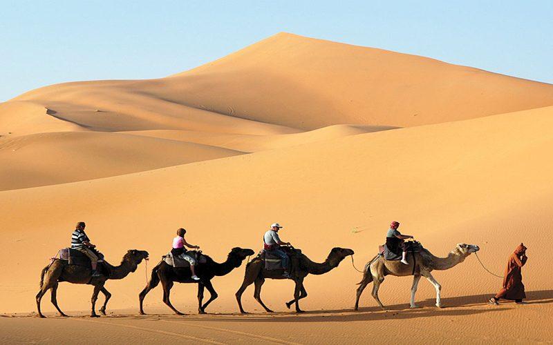 Jaisalmer Desert Safari - Your Essential Guide