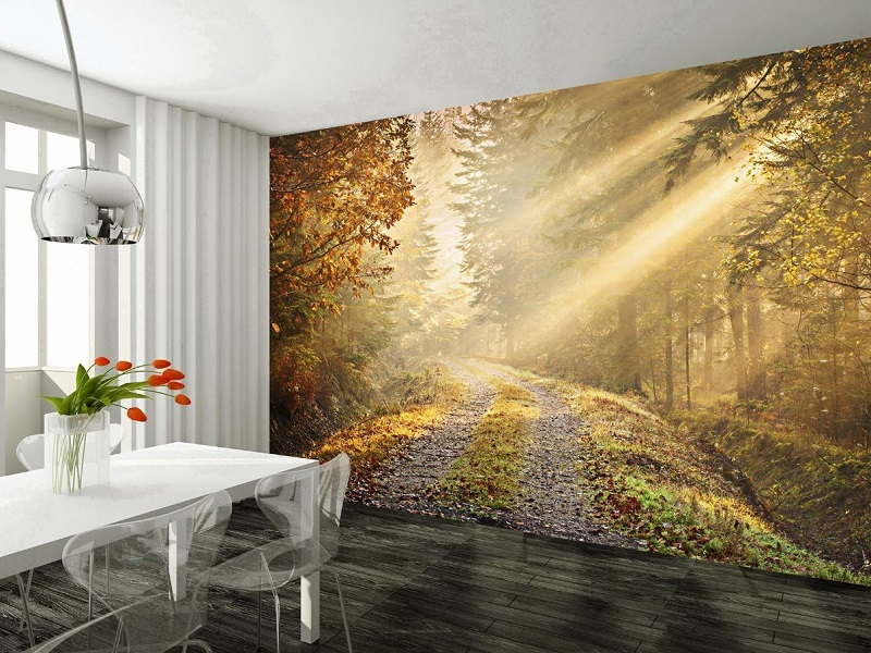 The Right Way To Hang The Wall Murals