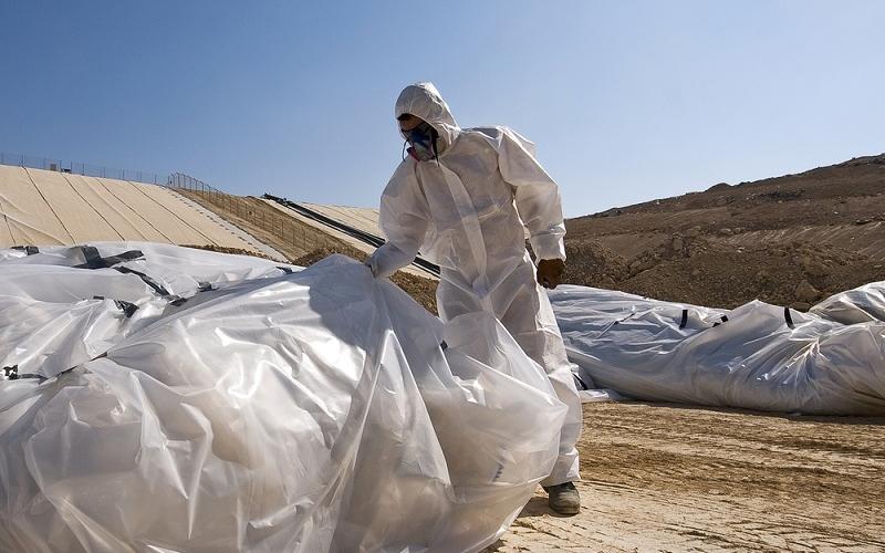 asbestos removal and disposal