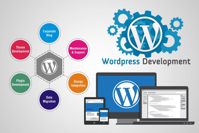 Top 4 Reasons That Prompt You Choose Custom WordPress Development Services