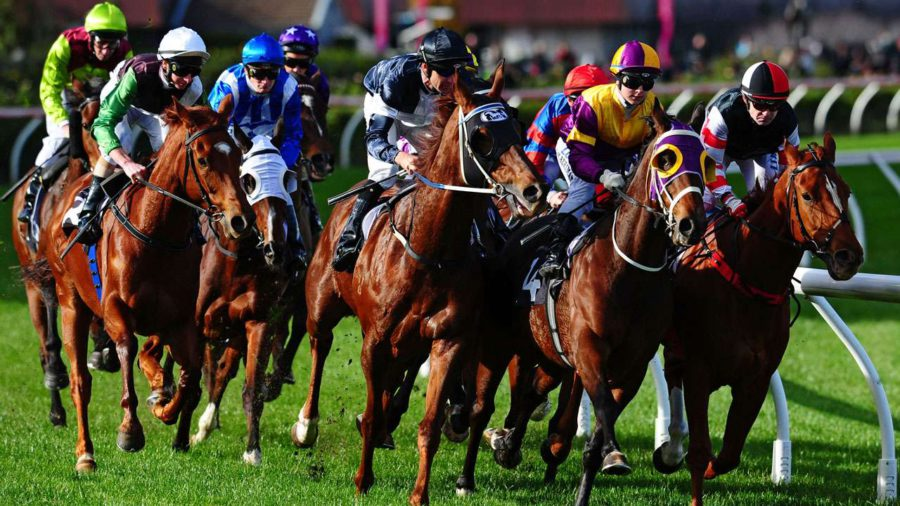 New Horse Racing Season Starts. Are You Ready